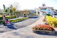 周辺環境:ユーカリ交通公園